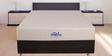 The Visco Royal 8 Inches Thick King Size Memory Foam Hybrid Mattress by Springtek
