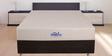 The Visco Royal 8 Inches Thick Queen Size Memory Foam Hybrid Mattress by Springtek