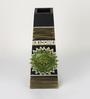 Aapno Rajasthan Brown Wooden Dark Shade Elegant Flower Vases