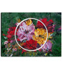Hashtag Decor Abstract Flower Engineered Wood 27 x 20 Inch Framed Art Panel