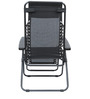 Acer Folding Chair in Black Colour by HomeTown