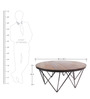 Albert Round Coffee Table in Black & Brown Colour by Asian Arts