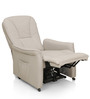 Amigo Chair with Reclinable Back in Grey Colour by Royal Oak