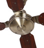 Anemos Brown Classic Antique Brass 1370 MM Cherry Designer Ceiling Fan