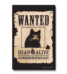 Bcreative Schrodinger'S Cat (Officially Licensed) Fridge Magnet