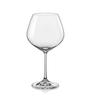 Bohemia Crystal Glass Wine Glasses