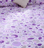 Bombay Dyeing Purple 100% Cotton Queen Size Bed Sheet - Set of 3