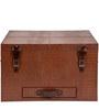 Brown Color Mini Bar Trunk by Studio Ochre