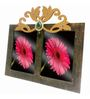 Butterfly Homes Black Wooden 8.5 x 12 Inch Enigmatic Single Photo Frame