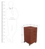 Storewell Chest of Drawers in Brown colour  by Cello