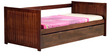 Pasco Single Bed With Pull Out in Honey Oak Finish by CasaCraft