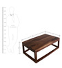 Coffee Table in Solid Wooden Box Frame in Brown Colour by AfyDecor