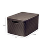 Curver 3619 Plastic Brown Large Storage Box with Lid