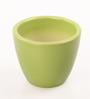 Decardo Green Ceramic Table Top Planter