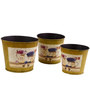 Deziworkz Round Yellow Victorian planters/tubs (Set of 3)