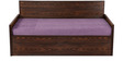 Dollop Slider Bed in Purple Colour by Auspicious