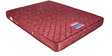 Free Offer - Dream Sleep 6 Inches Thick King-Size Multi-Colour Spring Mattress by Kurl-On