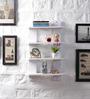 Driftingwood White MDF Ladder Shape Wall Shelf