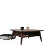 Dweller Coffee Table in Walnut Colour by DwellDuo