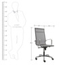Economical Black Manager Chair in Black & Grey Colour by FabChair