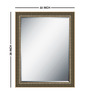 Miranda Minimalist Mirrors in Silver by CasaCraft