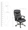Executive High Back Office Chair in Black Colour by Adiko Systems