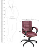 Ergonomic Low Back Office Chair in Brown Colour by Adiko Systems