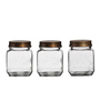 Fabuliv Lavina Transparent Square 900 ML Jar with Lid - Set of 3
