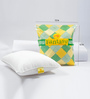 Feather Lite White Poly Fibre 12 x 12 Inch Fantasy Cushion Inserts - Set of 2