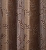 Campinas Set of 2 Curtains in Brown by CasaCraft