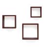 Forzza Mahogany Engineered Wood Kate Square Wall Shelves - Set of 3