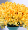 Fourwalls Yellow Artificial African Lily Flower Bunch Set