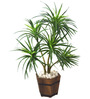 Fourwalls Green Polyester 220 Leaves & 5 Branches Artificial Dracaena Plant