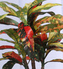 Fourwalls Red Polyester Croton Bonsai In Ceramic Vase