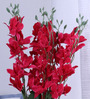 Fourwalls Fuscia Pink Synthetic Artificial Orchid Stems