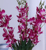 Fourwalls Fuscia Purple Synthetic Artificial Orchid Stems - Set of 8