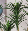 Fourwalls Green Polyester Decorative Artificial Yucca Plant