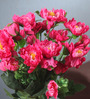 Fourwalls Pink Fabric Gorgeous Artificial Synthetic Peony Bunch