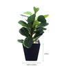 Fourwalls Ceramic Vase Mini Fiddle Leaf