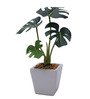Fourwalls Multicolour Polyester Philodendron Plant In Grey Ceramic Vase
