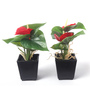 Fourwalls Red Synthetic Artificial Anthurium Plant with Vase - Set of 2