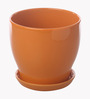 Gaia Orange Glazed Ceramic 7 x 7.5 Inch Table Top Planter with Plate
