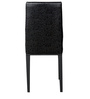 Glass Top Four Seater Dining Set in Black Colour by Parin