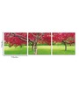 Go Hooked MDF 27 x 9 Inch 3-Panel Colours of Nature Wall Decor