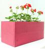 Green Gardenia Table Top Wooden Box Planter-Pink
