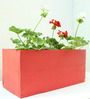 Green Gardenia Table Top Wooden Box Planter-Red