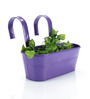Green Girgit Purple Oval Railing Planter