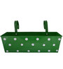 Green Girgit Polka Dot Rectangle Planter in Green Colour