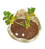 Greymode Maadu Planter