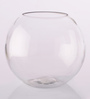 Gupta Glass Gallery Transparent Glass Vase